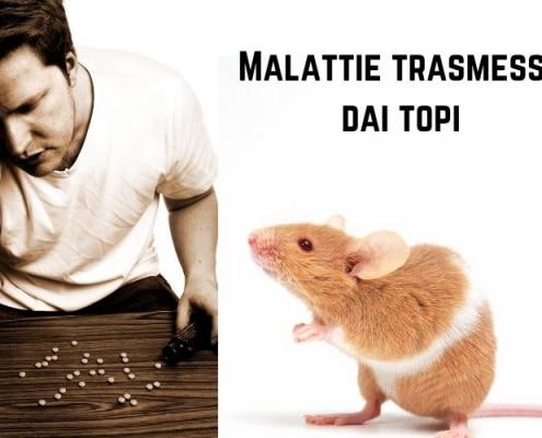 Malattie trasmesse dai topi